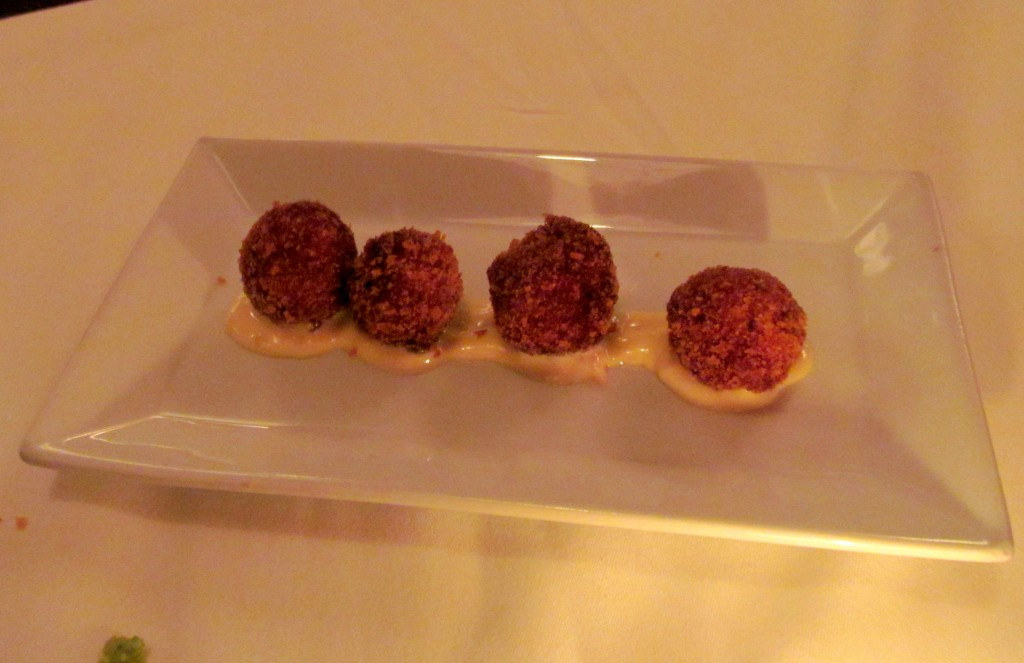 Yup...MORE FOOD! Fried cheesy balls of heaven sitting in aioli.
