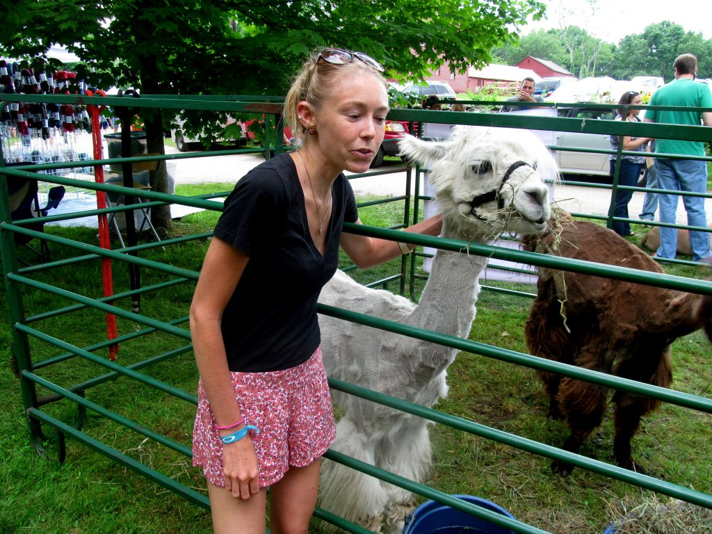 Bye to these shorts (but hello to this awesome llama).